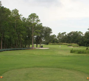 The Plantation Golf Course - Cranes Roost Picture
