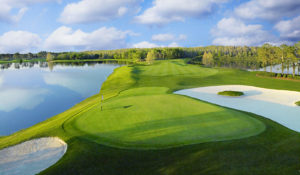 Falcon's Fire Golf Club Picture