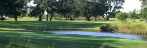 Image of Hole #15 at North Shore Golf Club (from GolfAtNorthShore.com)